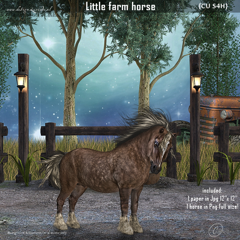 CU Little farm horse