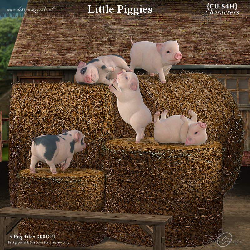 CU Little Piggies